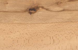 Buche gedämpft Universal Haro lackiert 13,5x180x2200mm